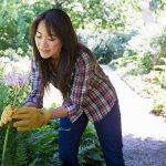 7 Gardening Tools the Pros Swear By