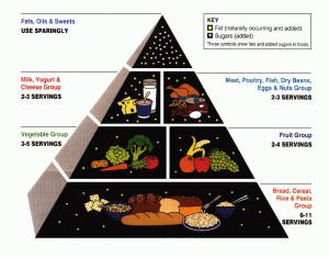 affordable diet plan