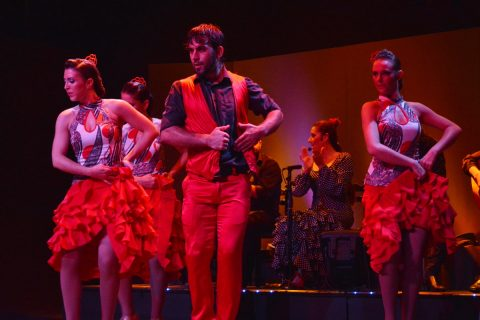 Enjoy the best Flamenco in Barcelona